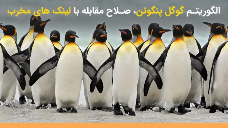 آشنایی با آخرین نسخه الگوریتم پنگوئن | صلاح مقابله با لینک های مخرّب !