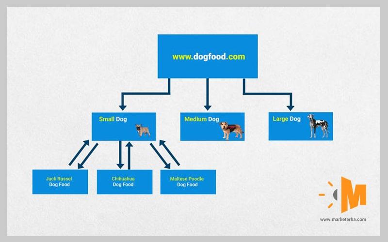 افزایش ورودی گوگل با ساخت لینک های داخلی
